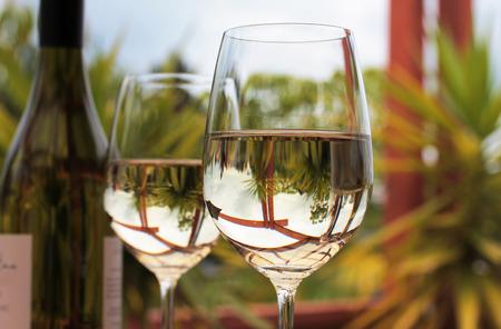 Fles glazen witte wijn met yucca bomen op de achtergrond