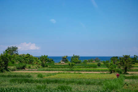 Landscape of Balinese beach in a sunny say with a blue sky