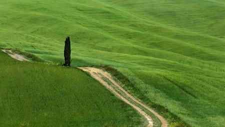 Landscape un tuscany