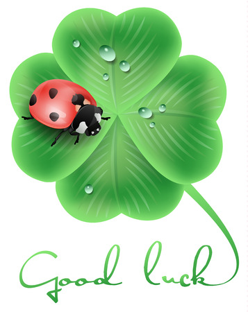 fortune flower: good luck illustration with a ladybug and a clover