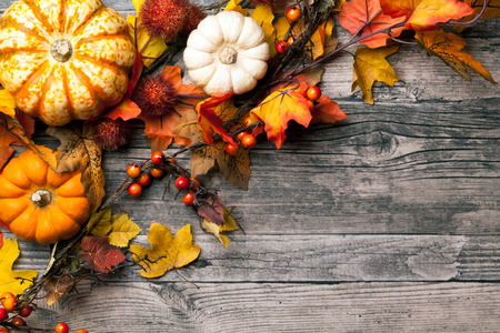 thanksgiving cornucopia: autumn background with pumpkins