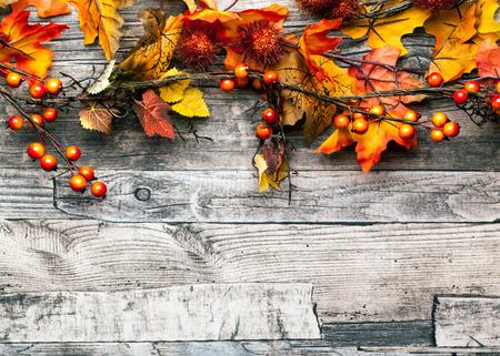 vintage leaf: autumn background Stock Photo