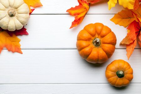 colorful frame: autumn pumpkins background