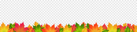 Colorful autumn leaves border frame isolated on transparent background 矢量图像