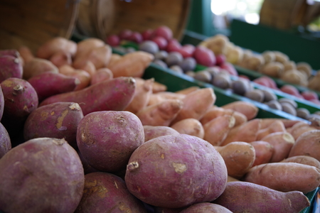 Tampa, Florida  USA - May 5 2018: Tampa Bay Farmers Market - Fresh Farmers Market Fruit and Vegetable Procduce Stand