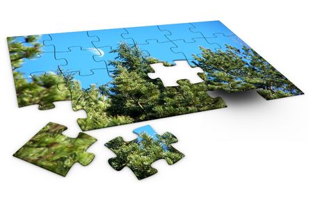 3ds: 3d rendered image of a jigsaw-puzzle of nature. high quality.