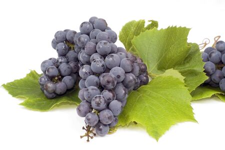 Bunch of dark grape with green leafs isolated Stock Photo