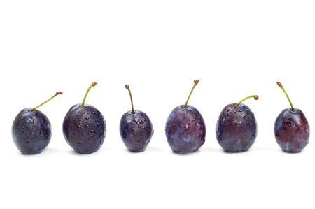 Plums isolated Stock Photo