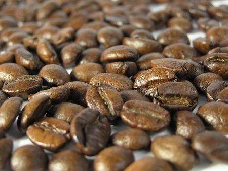 infusing: Coffee beans
