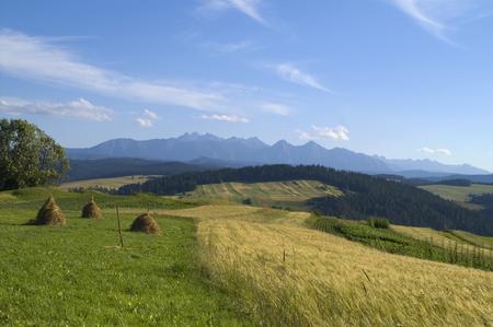 polish landscape after harvest photo