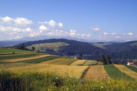 polish mountain landscape  photo