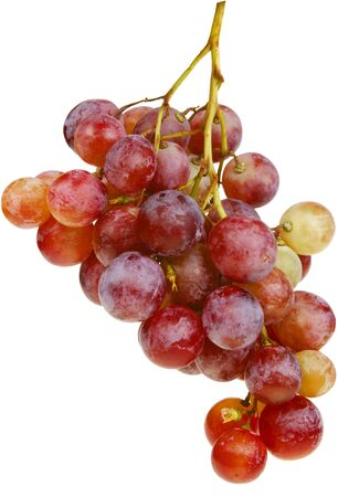 Bunch of red grapes isolated on white with clipping path. photo