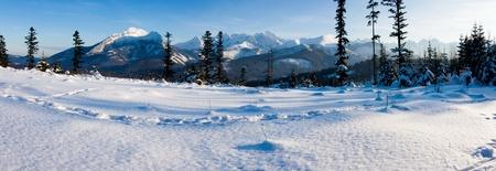 Panoramic Tatra Mountains in winter scenery  photo