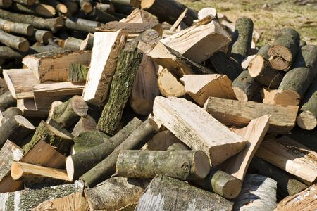woodpile:  pile of dry chopped firewood
