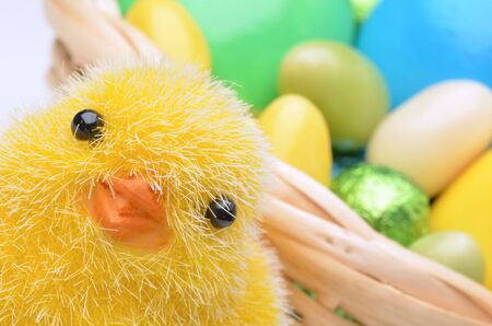 Easter chick photo