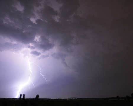 Lightning strikes at the horizon near two trees. Stock Photo - 14259709