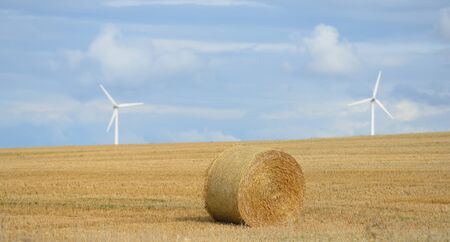 Rural idyll - straw bales on the harvested field Stock Photo - 15518815
