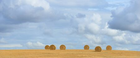 Rural idyll - straw bales on the harvested field Stock Photo - 15518806
