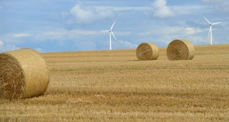 Kırsal idil - hasat alanında saman balya Stock Photo