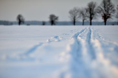 trail Standard-Bild