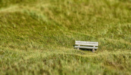 Lonely wooden bench in a dune