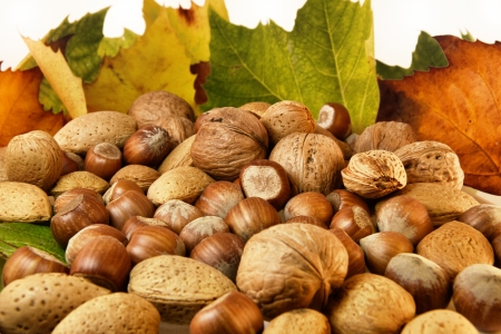 Isolated Nuts and autumn leaves