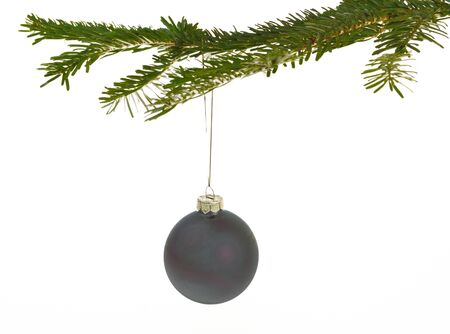 Dark gray Christmas decorations hanging from a pine branch - isolated on white background Stock Photo