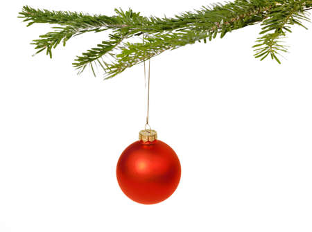 Red Christmas decorations hanging from a pine branch - isolated on white background