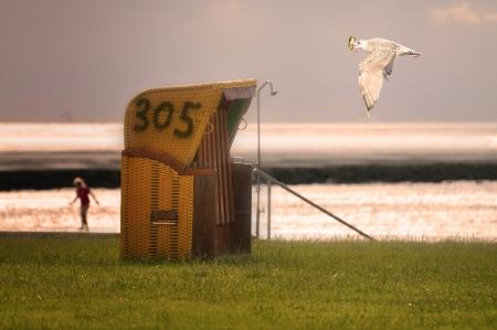 Bir martı Kuzey Denizi üzerinde bir plaj sandalye geçmiş uçar Stock Photo