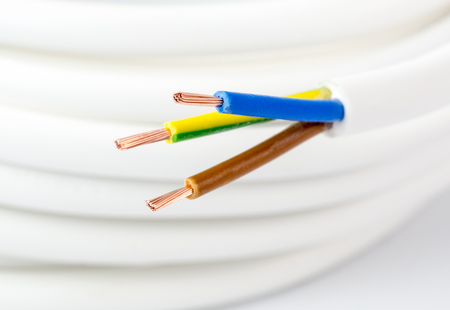 stripped: Stripped strands of a three-wire power cord