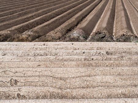 Structures of a potato field