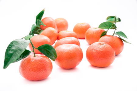 Fresh tangerines with green stems and leaves