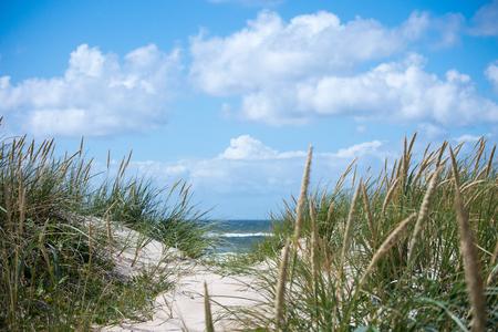 Dunes at the North Sea shore Standard-Bild