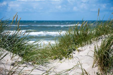 Dunes at the North Sea Standard-Bild