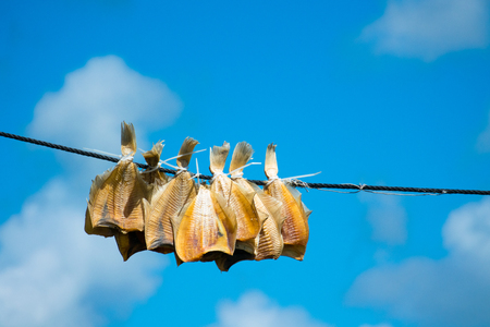 Sun-dried Plaice on a line with blue sky