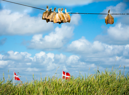 Sun-dried Plaice on a line with danish flags