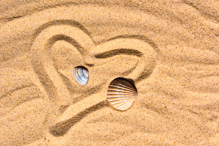 Heart and shells in the sand Banco de Imagens