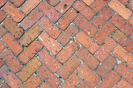 red brick repetition: Brick Path Stock Photo