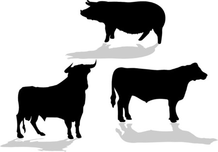 sharp curve: farm animals - vector ilustration