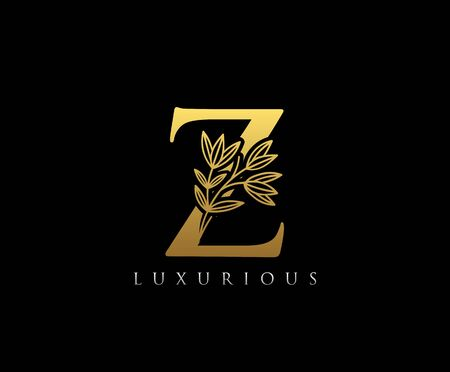 Gold Z letter luxury beauty flourishes ornament monogram logo Vectores