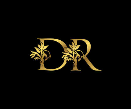 Classy Gold letter D, R and DR Vintage decorative ornament letter stamp, wedding logo, classy letter logo icon.