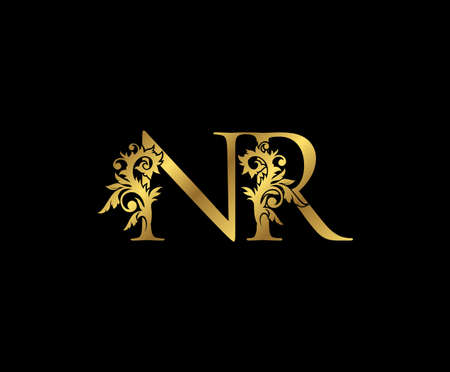 Classy Gold letter N, R and NR Vintage decorative ornament letter stamp, wedding logo, classy letter logo icon.