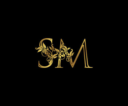 Luxury Gold letter S, M and SM Vintage decorative ornament letter stamp, wedding logo, classy letter logo icon.