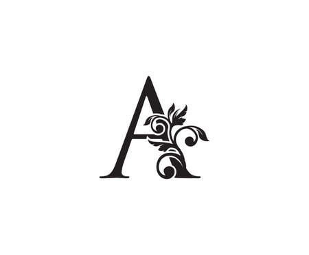 Vintage Letter A Logo. Classic A Letter Design Vector with Black Color and Floral Hand Drawn.