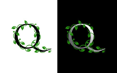 Elegant Q Letter Icon with luxury green leaf logo design. Nature Q Icon.
