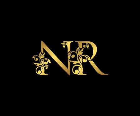 Golden NR, N and R Luxury Logo Icon, Vintage Gold  Initials Mark Design. Elegant luxury gold color on black background 矢量图像