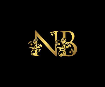 Golden NB, N and B Luxury Logo Icon, Vintage Gold  Initials Mark Design. Elegant luxury gold color on black background 矢量图像