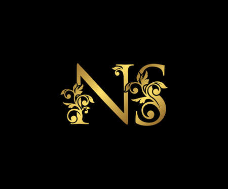 Golden NS, N and S Luxury Logo Icon, Vintage Gold  Initials Mark Design. Elegant luxury gold color on black background