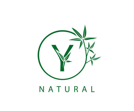 Y Letter Green Bamboo Logo Design.