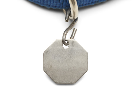 Blank Pet Dog Tag and Collar Isolated on White Background.